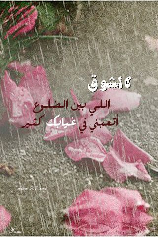 صور كلمات اغاني عبدالحليم حافظ