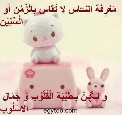 524667_522399871116703_1518733288_n.jpg 403×379)