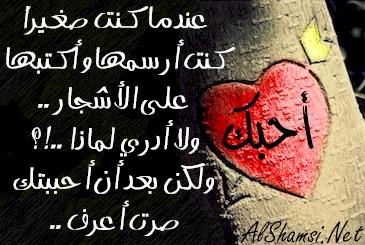 صورة كلام جميل في الحب