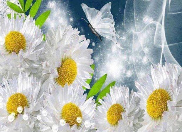 وردة جميل رقيق بمناسبة الحب 13591177863.jpg