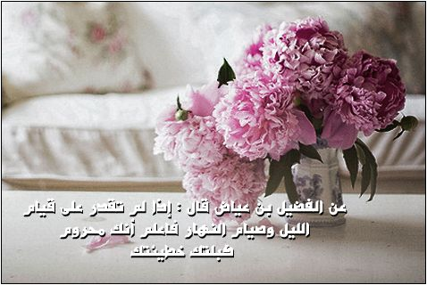 82487msha3ry.jpg 478×320)