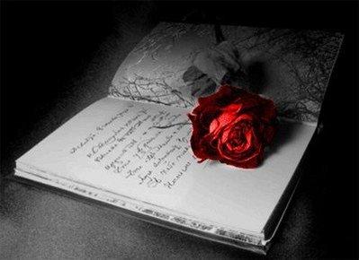 صورة اجمل ماقرات من عبارات الحب