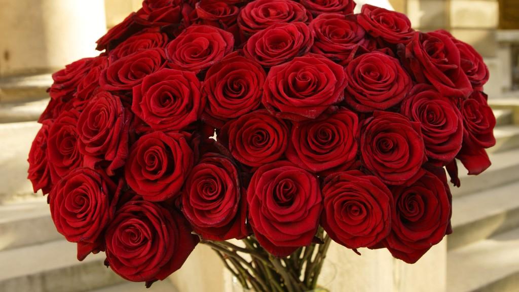 صورة كلام في الورد