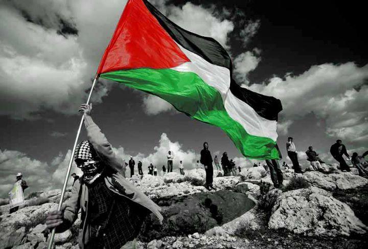 صورة كلمات رائعة عن فلسطين