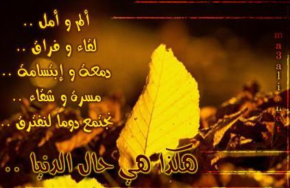 بالصور كلمات قصيره عن الوداع 20160809 128