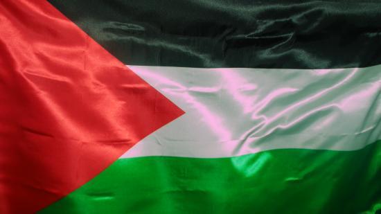 صورة كلمات اغاني وطنية فلسطينية