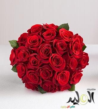 صورة اجمل كلام عيد الحب
