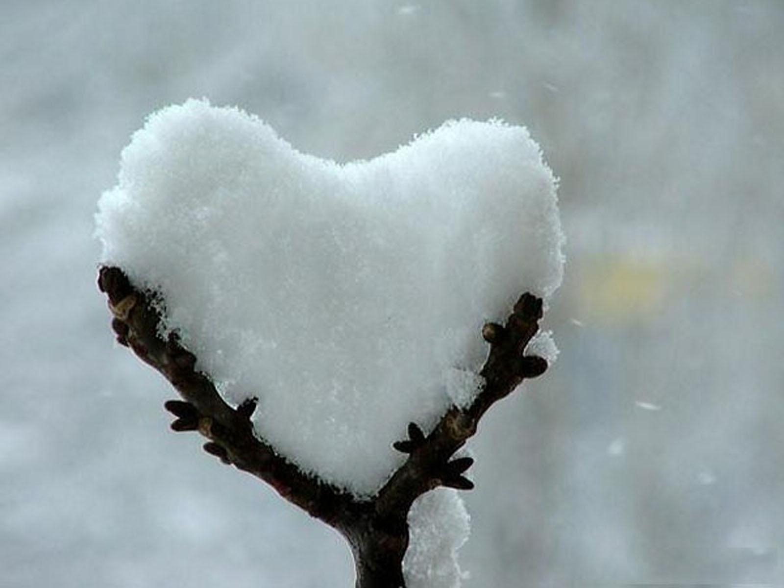 صورة كلمات صغيره عن الحب