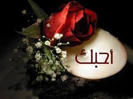 صورة كلمات اغنيه الطير حسين الجسمي