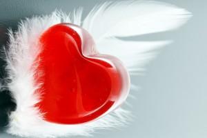 صورة كلام جميل للحب