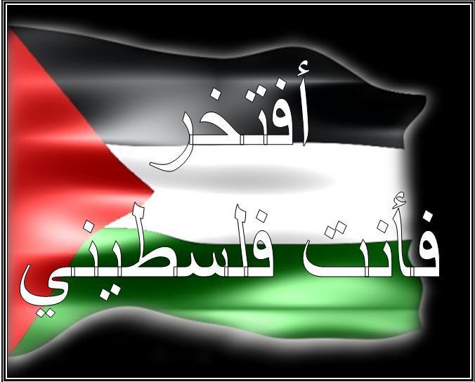 صور كلام جميل لفلسطين