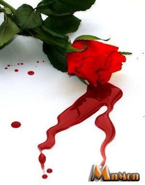 صورة كلام في عذاب الحب