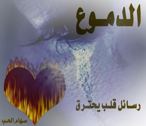 بالصور اجمل الصور وعبارات الحب , من روائع العشق وجنانه 30086 9