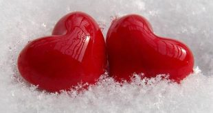 صورة عبارات الحب والغرام