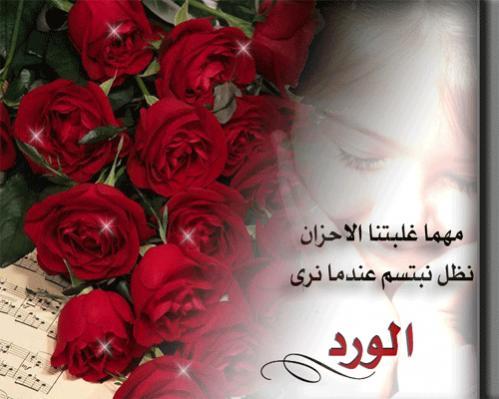 صور كلام حلو عن الورد , اجمل ماقيل بالورد وعلى الزوهور من كلمات بالصور